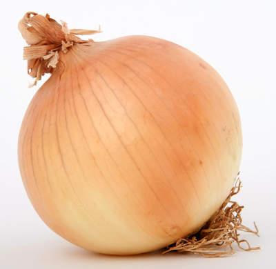 Photo of فوائد البصل – البصل غني بالمواد الحيوية