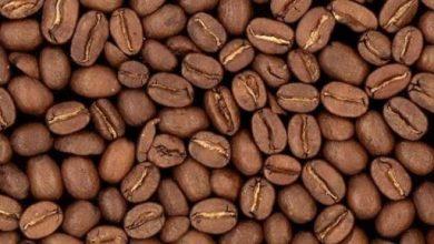 Photo of شرب القهوة بشكل منتظم يقلل من خطر الاصابة بسرطان الجلد