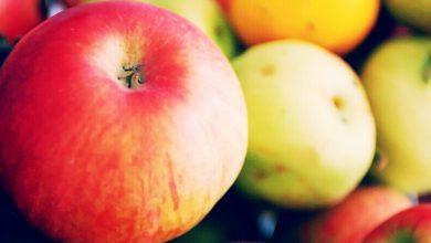 Photo of ما هي فوائد التفاح الصحية؟ معلومات عامة وهامة