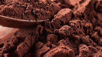 Photo of فوائد الكاكاو – الكاكاو ينشط الدماغ ويحمي من الإصابة بالزهايمر