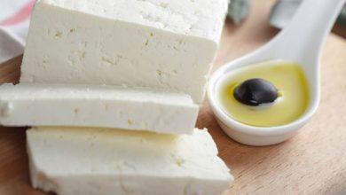 فوائد الجبن للعظام