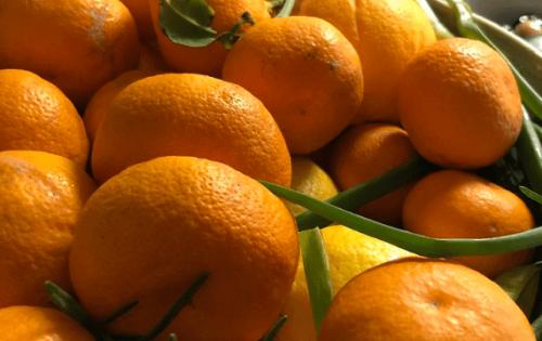 Photo of فوائد اليوسفي – اليوسفي يحفز من عملية التمثيل الغذائي