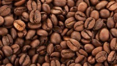 Photo of شرب القهوة يحمي الكلى ويخفض من نسبة الوفاة بسبب الفشل الكلوي