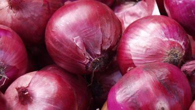 Photo of فوائد البصل الأحمر – البصل الأحمر يقاوم السرطان