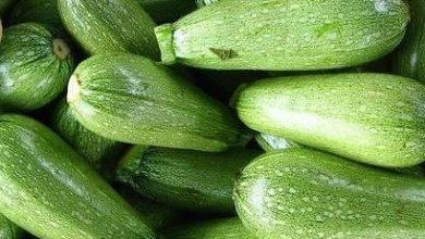 Photo of القيمة الغذائية للكوسى – فوائد الكوسى