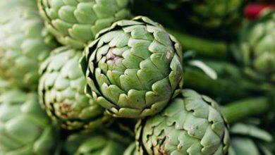 Photo of ما هي العناصر الغذائية في الشوكي – القيمة الغذائية للخرشوف