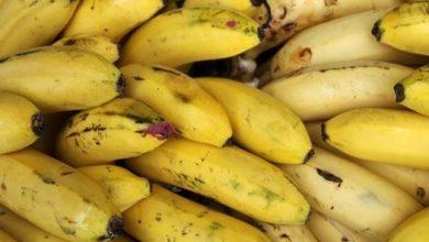اضرار قشر الموز