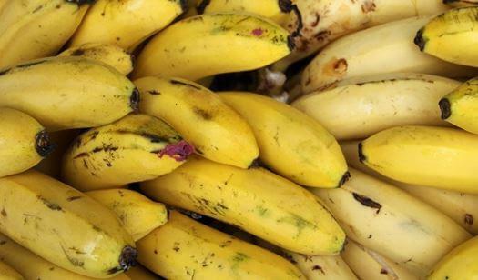Photo of اضرار قشر الموز – علماء ينصحون بغسل اليدين بعد تقشير الموز
