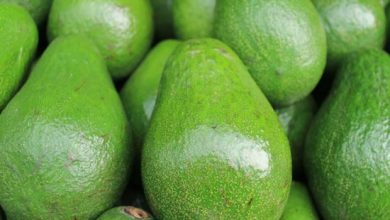 Photo of القيمة الغذائية للأفوكادو  – العناصر الغذائية في الأفوكادو