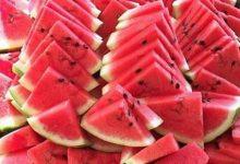 فوائد بذر البطيخ