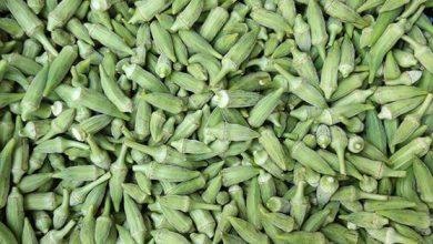 Photo of القيمة الغذائية للبامية – العناصر الغذائية في البامية